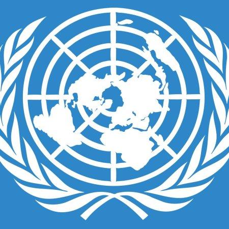 Naciones Unidas AGONU